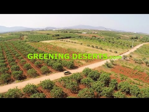 Greening Deserts Sustainable Projects