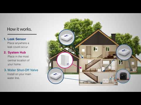 Leak Detection System Home