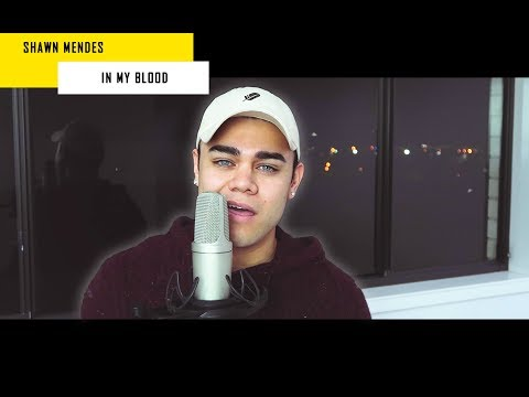 Shawn Mendes - In My Blood | Kast Away Remix