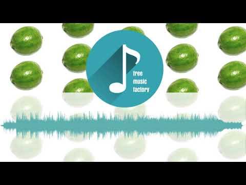 Stefan Kartenberg - Falling  | Free Music Factory