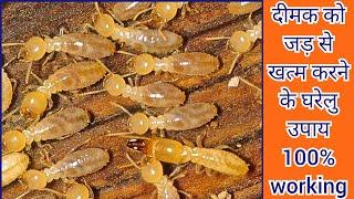 दीमक से अगर आप की परेशान हैं तो ये ज़बरदस्त ट्रिक अपनाएँ।How to Get Rid of Termites?