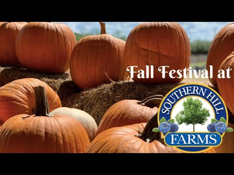 Fall Festival At Southern Hill Farms In Clermont, FL