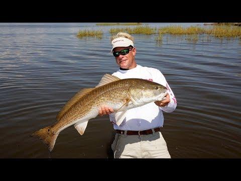 Spinnerbait Fishing For Redfish In Venice Louisiana