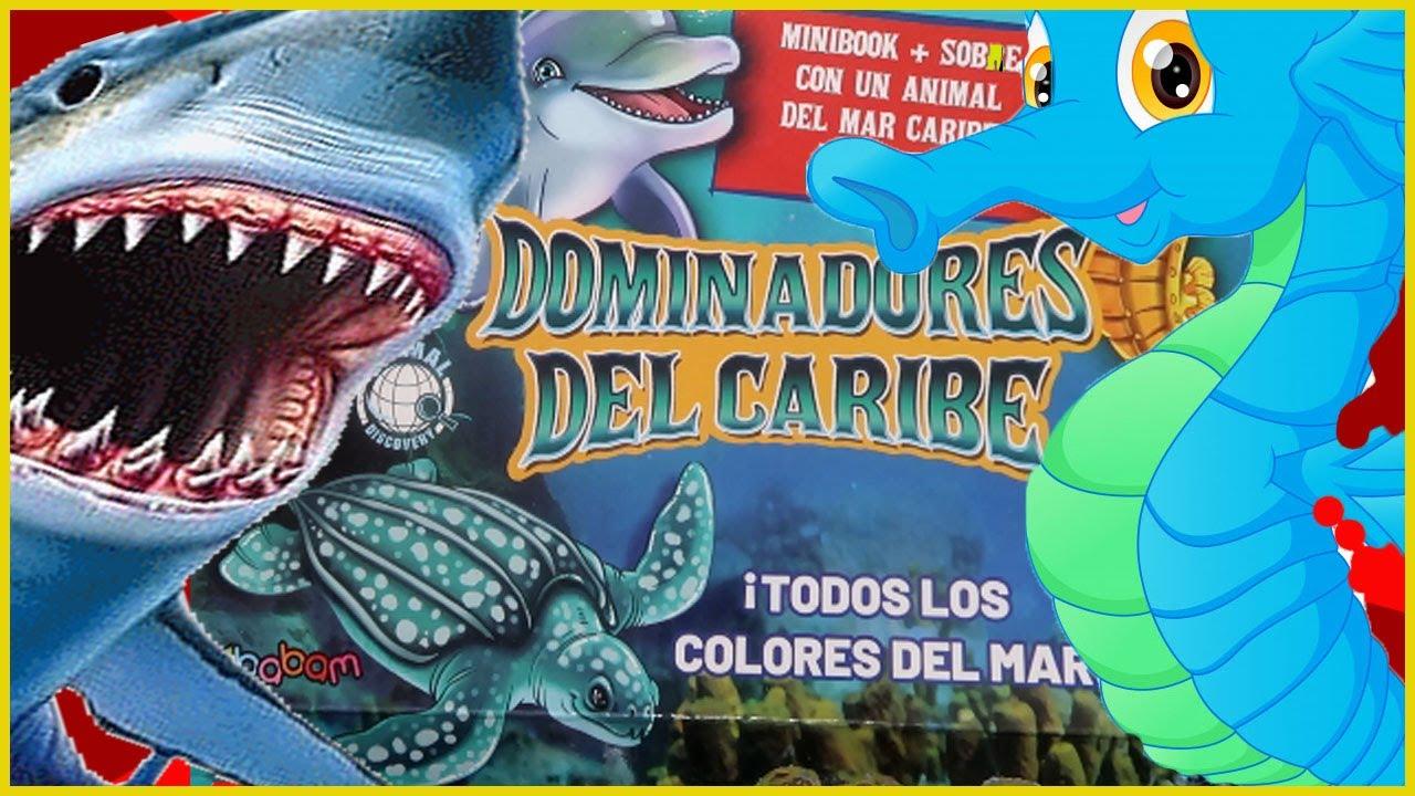 DOMINADORES DEL CARIBE | ANIMALES BLANDITOS MARINOS