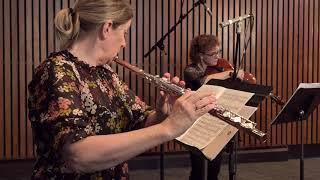 Beau Soir Ensemble - Suite Breve by Ladislas Rohozinski, 6th Movement