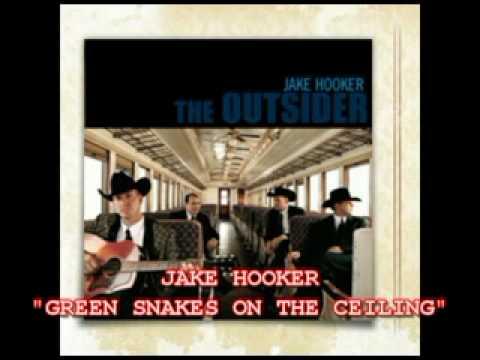 JAKE HOOKER - GREEN SNAKES ON THE CEILIN