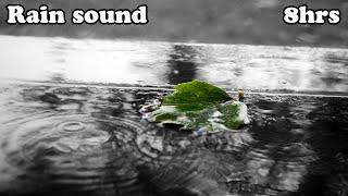 rain sound relaxing sound sleep music white noise asmr 8hrs