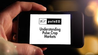 2017 PulsED Webinar_Pulse Crop Markets