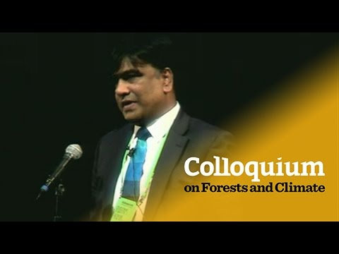 Colloquium on Forests & Climate: Pushpam Kumar on green economy for rural prosperity