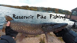 Reservoir Pike Fishing