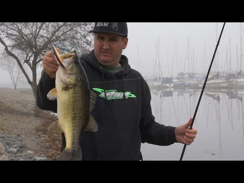 Bass fishing tips for bank anglers youtube for Youtube bass fishing
