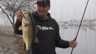 Bass Fishing Tips for Bank Anglers!