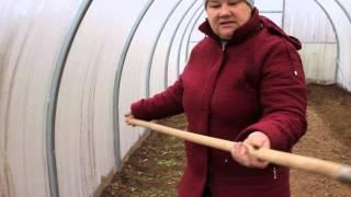 Результат посадки салата и укропа под зиму.