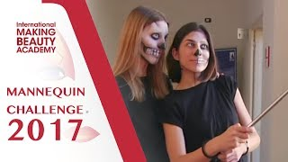 Mannequin challenge long