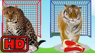 Kid -Kids -Learn Colors Learn Names And Sounds ZOO Wild Animals Changing Colors/Eating Food/Nursery