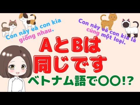 ベトナム語で AとBは同じです。AとBはどこが違いますか?←は〇〇!?