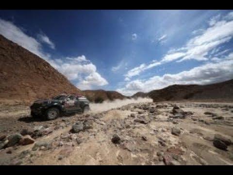 الكشف عن تفاصيل رالي دكار في السعودية  - نشر قبل 1 ساعة