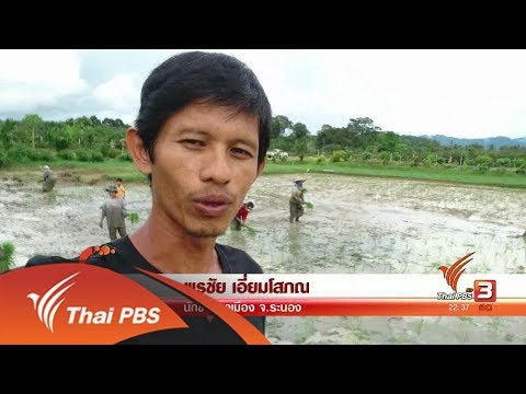 เกษตรกร จ. ระนอง - วันที่ 26 Sep 2017