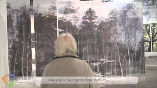 Exposition - Petites et grandes histoires du bois sur l'eau - Édition 2015 à Avallon (89)