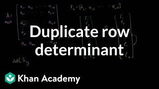 Linear Algebra: Duplicate Row Determinant