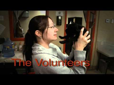 HALO Animal Rescue Visionaries Documentary sponsored by PetSmart Charities