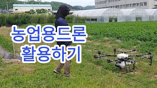 [농기계활용] 농업용 드론 활용하기 (괴산울엄마)