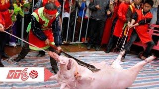 Bắc Ninh chuyển lễ chém lợn vào nơi kín đáo | VTC