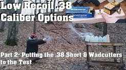 Low Recoil .38 Caliber Options Part 2- Putting the .38 Short & Wadcutters to the Test