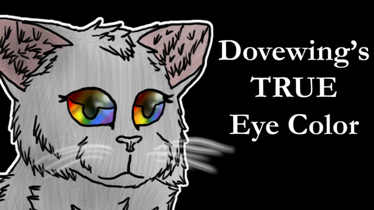 The TRUTH About Dovewings Eye Color