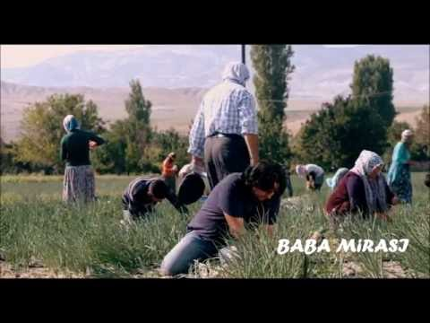 BABA MİRASI (Üç Kardeş ve Tarla Sahnesi)
