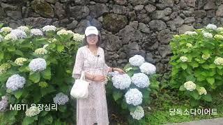 중년패션코디 ~쉬폰원피스