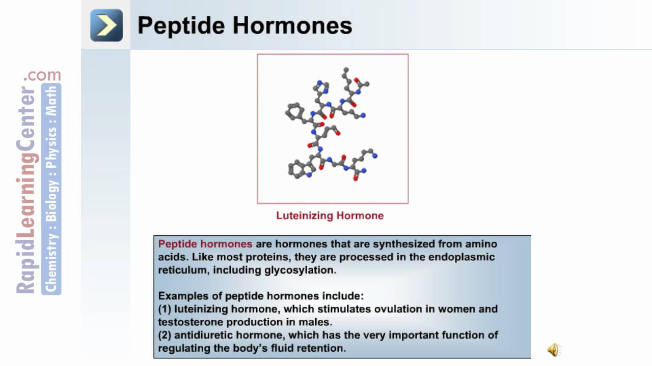 The Endocrine System - Part 1 of 3