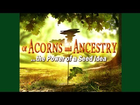 Bruce Kellogg of Acorns and Ancestry: The Power of a Seed Idea