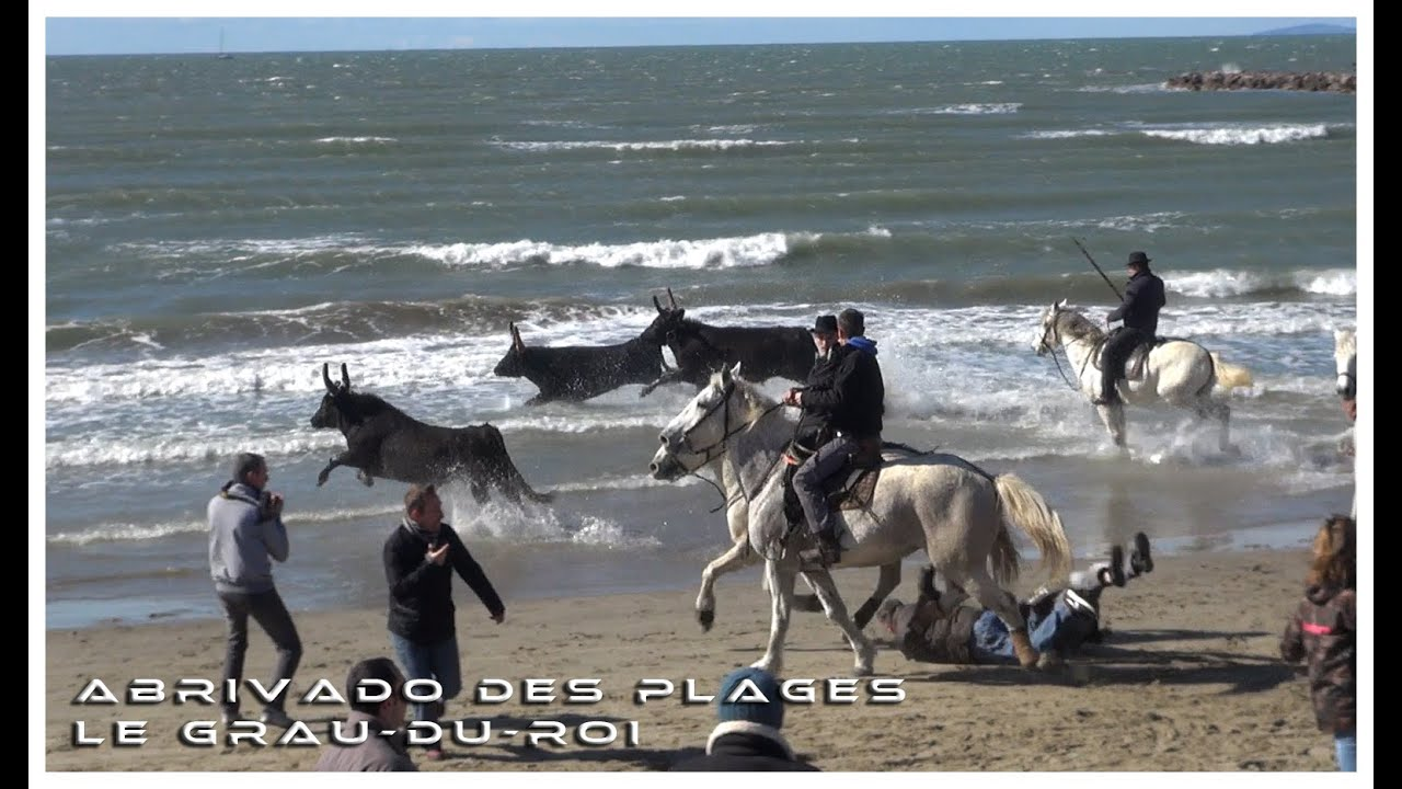Abrivado des plages le grau du roi 05 03 2016 youtube for Lac salonique grau du roi