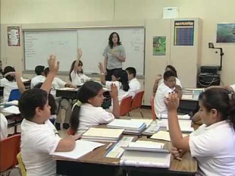 Empowering the Latino Community Award - Bahia Vista Elementary School