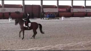 Valentina Truppa - horse: Eremo del Castegno - La Mandria