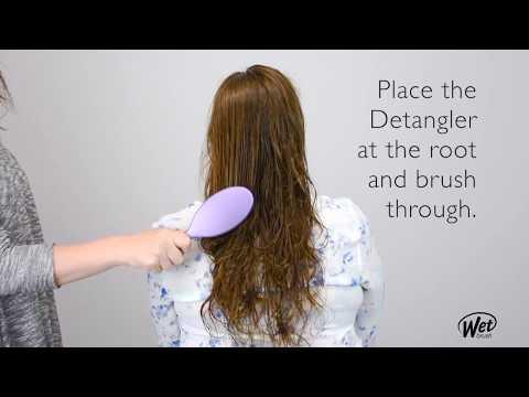 The Original Detangler from The Wet Brush