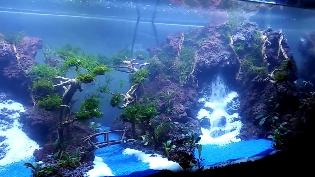 Aquascape waterfal 2 air terjun - YouTube