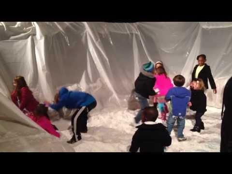 Snow Globe presented by Yuletide Office Solutions Memphis Botanic Garden