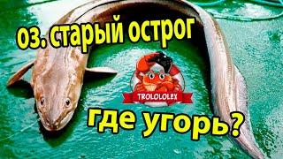 Русская рыбалка 4  Ищем угря  оз Старый острог