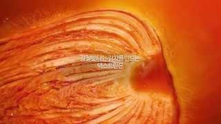 LG DIOS 김치톡톡 X 백종원: 감칠맛실험 편