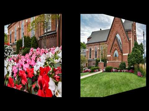 St. Mary's Oratory of the Immaculate Conception: 2020 Gardens and Church