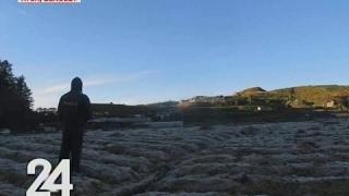 24 Oras: Ilang pananim, nabalot ng frost dahil sa tindi ng lamig