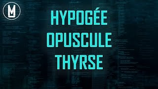 HYPOGÉE, OPUSCULE, THYRSE (Feat. Indiana Jones !) - code MU #7