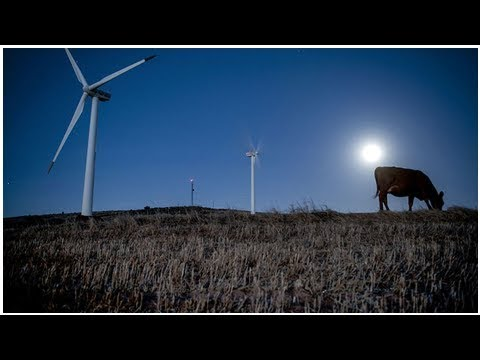 Energy department cuts budget allocation for clean energy