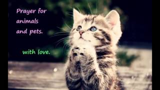 prayer for cats, dogs and other pets and animals