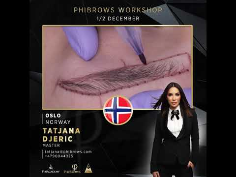 Phibrows Workshop, OSLO, 1/2 December 2018
