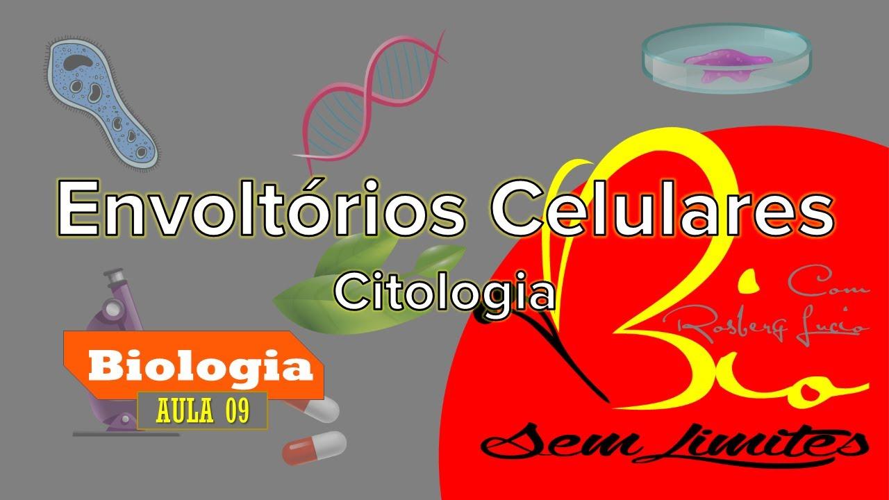 Envoltórios Celulares - Citologia #Aula 09 (Legendado)