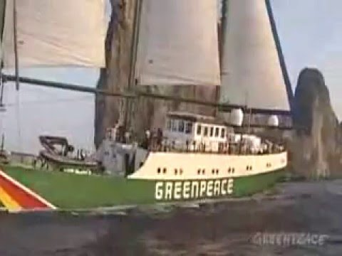 GREENPEACE - YOU GET WHAT YOU GIVE - NEW RADICALS