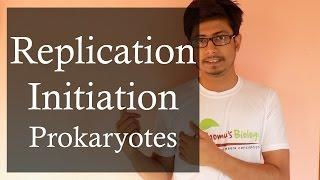 DNA replication in Prokaryotes 1 | Prokaryotic DNA replication initiation